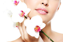 Skincare of a beauty female lips Royalty Free Stock Photos