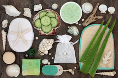 Skincare Beauty Treatment. Skincare beauty and exfoliating spa beauty treatment with aloe vera and cucumber and bathroom accessories with pearls and shells Stock Photo