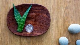 Skincare casalingo all'officina di bellezza con aloe organico fresco vera Fotografie Stock