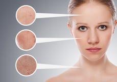 Skincare de concept. Peau de femme Photographie stock libre de droits