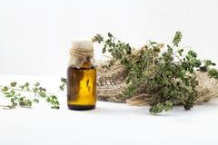 Skincare del aceite del tomillo Botella de extracto herbario, ramitas verdes frescas aromáticas Fotos de archivo