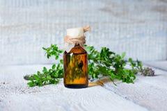 Skincare del aceite del tomillo Botella de extracto herbario, ramitas verdes frescas aromáticas, foco suave en bacground de mader Imagen de archivo libre de regalías