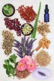 Skincare di erbe con gli ingredienti curativi Fotografia Stock