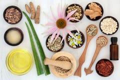 Skincare di erbe con gli ingredienti curativi Fotografia Stock Libera da Diritti