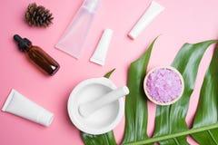 skincare e foglie naturali dei cosmetici su bianco immagine stock libera da diritti
