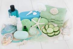 Skincare e trattamento di bellezza di cura del corpo Immagine Stock Libera da Diritti