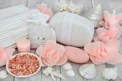 Skincare Exfloiating Beauty Treatment Stock Image