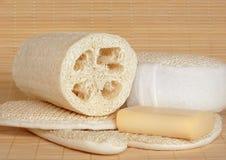 skincare för naturliga produkter Fotografering för Bildbyråer