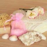 skincare för naturliga produkter Arkivbilder