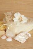 skincare för naturliga produkter Royaltyfria Foton