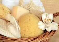 skincare för naturliga produkter Royaltyfri Foto