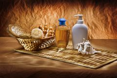 Skincare Items Set Royalty Free Stock Photography
