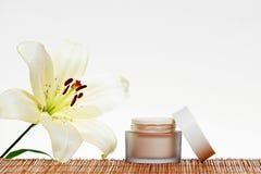 Skincare kräm Royaltyfri Fotografi