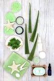 Skincare med aloe Vera Products arkivbilder