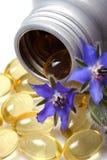 Skincare, petróleo hidratante de la borraja. Imagen de archivo libre de regalías