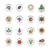 Skincare und organische Kosmetik der Schönheit ölen Vektorlinie Embleme und Logos lizenzfreie abbildung