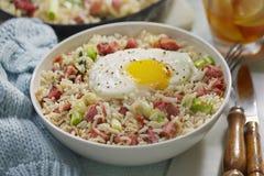 Skinka och ägg stekte ris royaltyfria foton