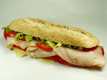 skinkasalamismörgås royaltyfri fotografi