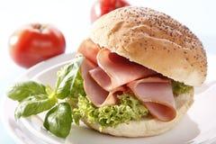 skinksmörgås Royaltyfri Fotografi