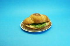 Skinksmörgås med ost och grönsallat Arkivbild