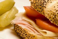 skinksmörgåsschweizare fotografering för bildbyråer