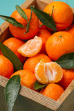 Skinless and fresh tangerines on a turquoise table Royalty Free Stock Images
