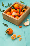Skinless and fresh tangerines on a turquoise table Royalty Free Stock Photography