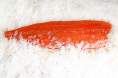 Skinless salmon fillet on ice Stock Photos