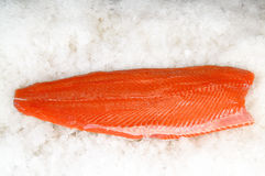Skinless salmon fillet on ice. Fresh piece of skinless salmon on ice Royalty Free Stock Photos