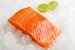 Skinless salmon fillet on ice Royalty Free Stock Photos