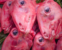 Skinned sheep heads. Stack of skinned sheep heads for sale at a market Stock Photos