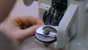 Skinner using sewing machine for stitching fur skin at atelier. Professional male skinner, furrier using special sewing machine for stitching fur skin at atelier stock video