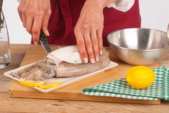 Skinning a cuttlefish Stock Image