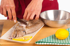 Skinning a cuttlefish at home. Skinning a fresh cuttlefish before cooking Royalty Free Stock Photography