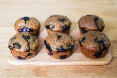 Skinny Banana Blueberry Muffins. Stock Photography