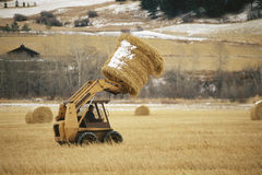 Skip loader Stock Image