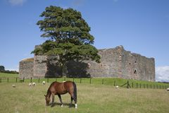 Skipness Castle Royalty Free Stock Photos