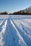 Skiprints dans la neige Images libres de droits