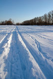Skiprints na neve Imagens de Stock Royalty Free