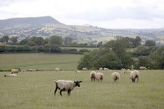 Skirrid Wales sul fotos de stock