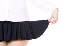 Skirt Stock Image