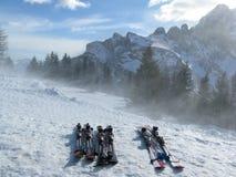 Skis Stockfoto