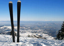 Skis. On a fresh snow on top of slope Royalty Free Stock Images