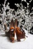 Skis dans la neige Images stock