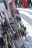 Skis grouped on a rack royalty free stock photo