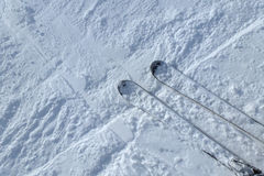 Skis on snow Royalty Free Stock Images