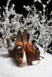 Skis in Snow. Miniature vintage skis with boots leaning against tree stump in snow stock images