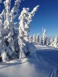 Skislope mit blauem Himmel Stockfoto