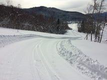 Skisporen en aardige de winterdag Royalty-vrije Stock Afbeelding