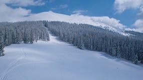 Skispur Stockbilder